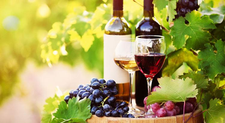 winesunder15